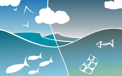 Mikroműanyagok környezetünkben